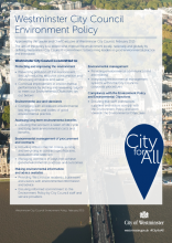 Westminster City Council Environment Policy
